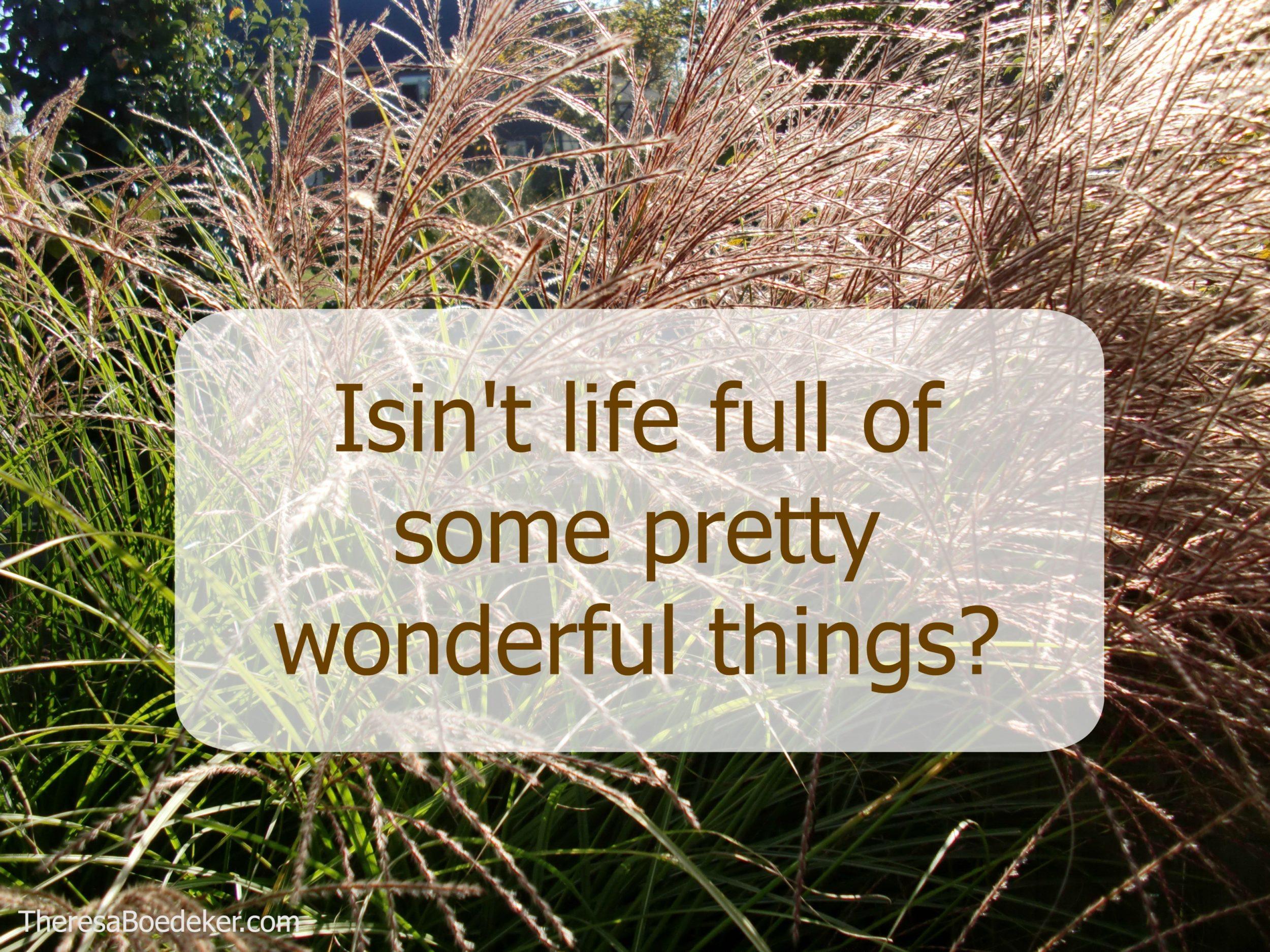 isint-if-wonderful-quote