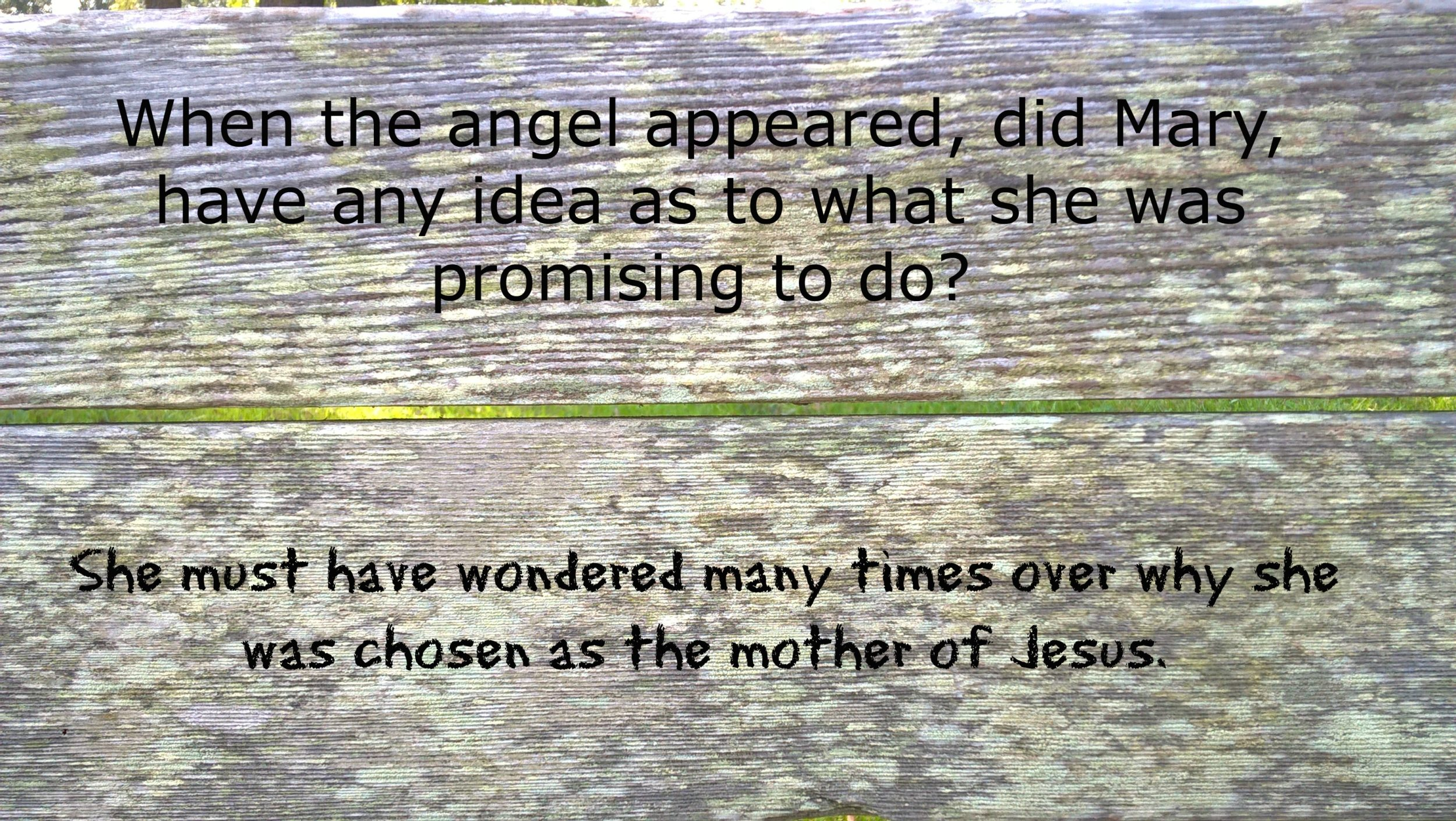 mary-and-christmas-quote