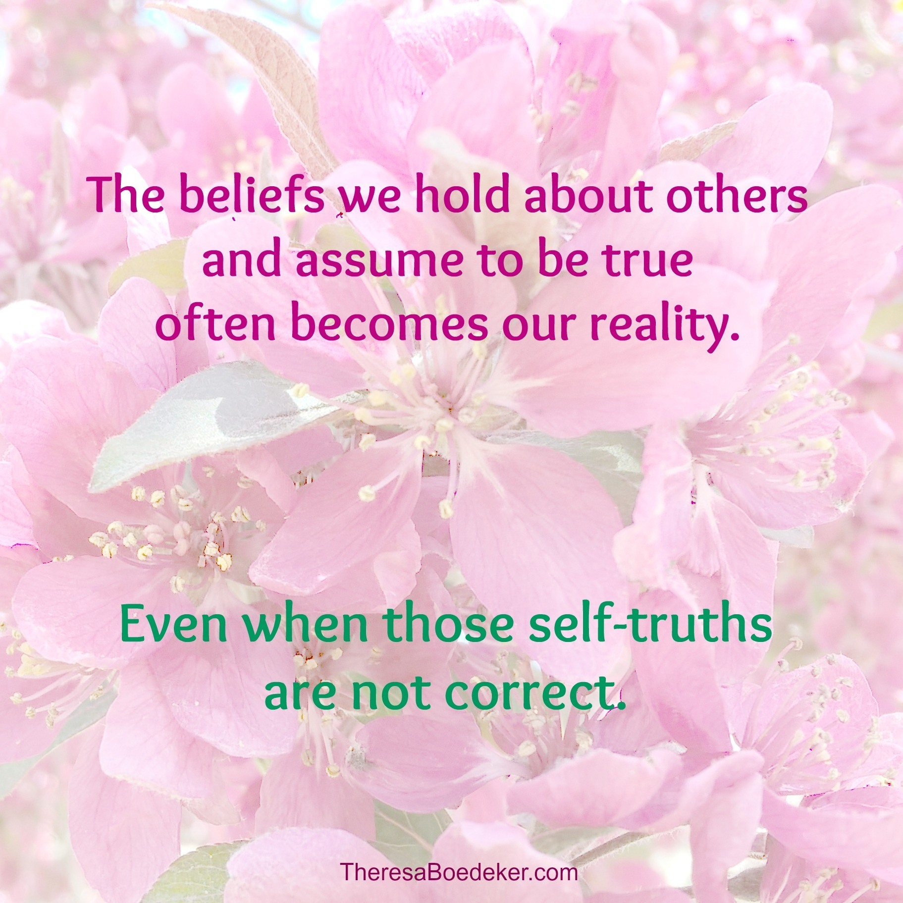 The beliefs we hold about others and assume to be true often becomes our reality. They shape our life. But are those perceptions and belief systems correct? And how do those views affect us? Find out.