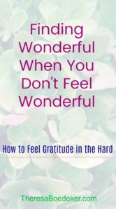 How to find the wonderful things to be grateful for, when you feel far from wonderful.