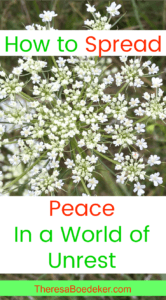 We can't spread peace around the world. But we can spread peace to those around us. To our little neighborhood, one peaceful act at a time.