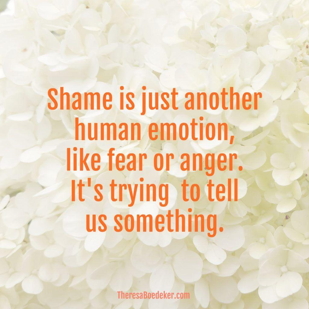 Shame is a warning flag that something needs dealing with.