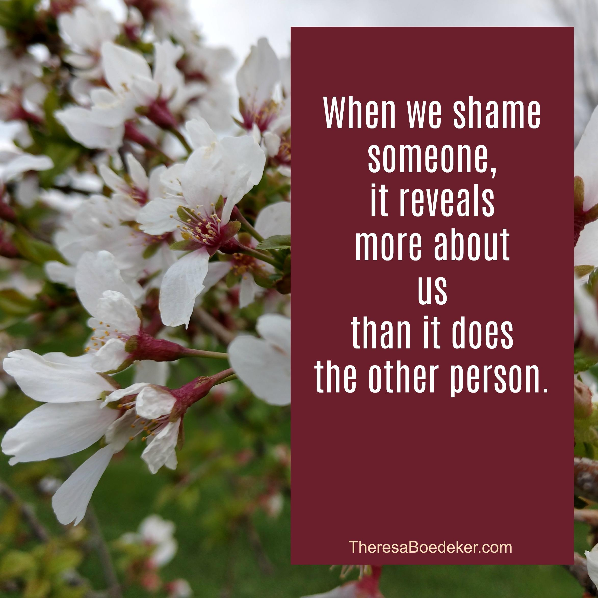 What are the 6 reasons we shame others?